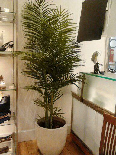 Decoracao Com Plantas Artificiais Para Lojas Escritorios Restaurantes